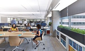 University of Oregon Publishes White Paper on Light, Views and the Workplace Experience